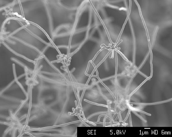 El implante del chip se llama ahora proyecto cambio climatico. 847cd-nanofibre-large